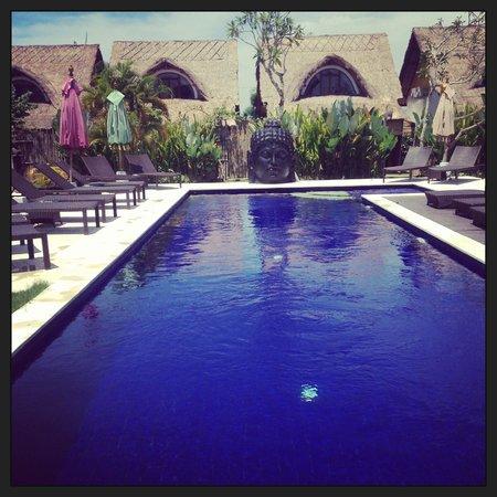United Colors of Bali : pool area