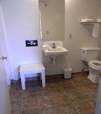 Gold Star Motel: Bathroom