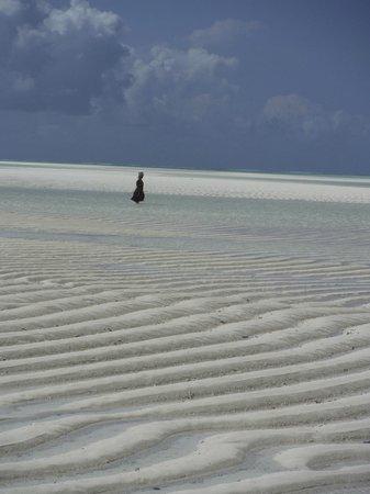 Sazani Beach Lodge: la plage à marée basse