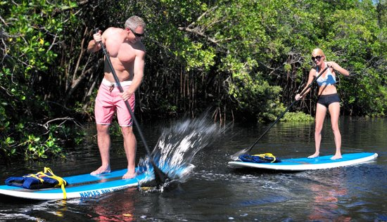 Naples Bay Resort : Paddle Boarding