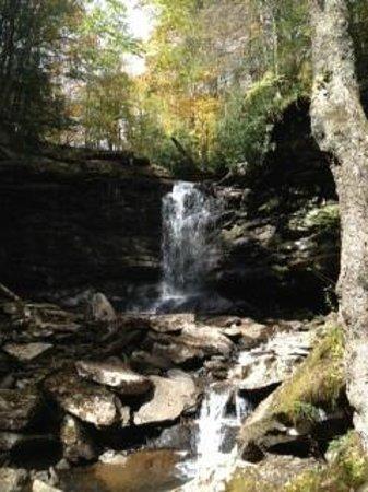 Falls of Hills Creek Scenic Area: Upper falls