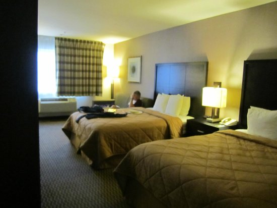 Comfort Inn & Suites Zoo / SeaWorld Area: large room 2 double beds and a couch for relaxing