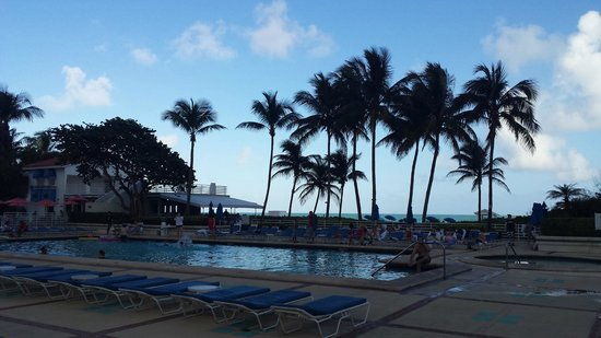 Miami Beach Resort and Spa : Vista da piscina
