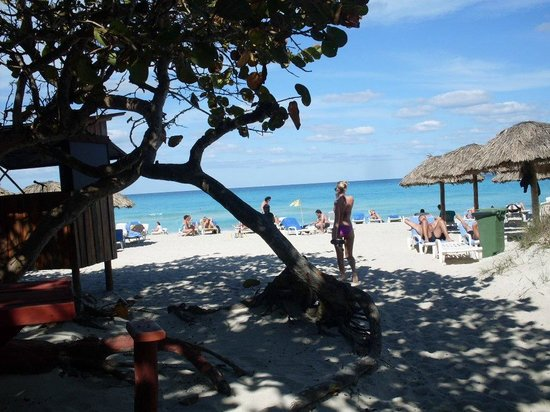 Be Live Experience Turquesa: La playa es muy bonita