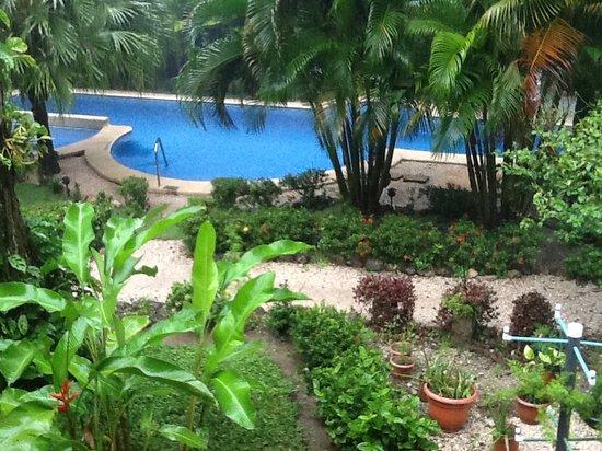 Giardino Tropicale: Garden