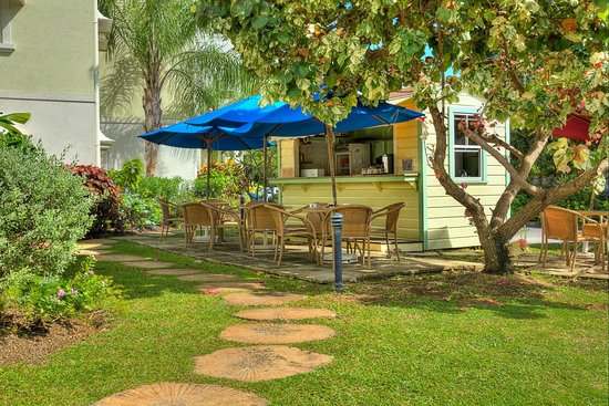 Beach View: The Hut Cafe