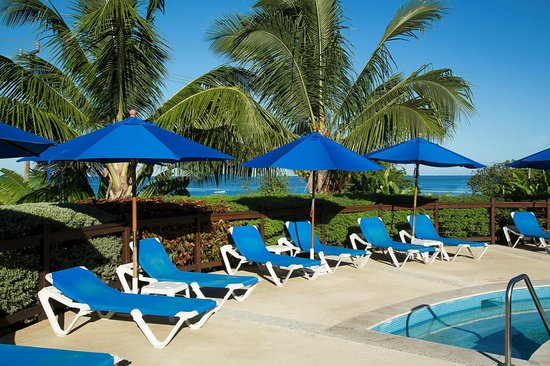 Beach View: Sunloungers at the Pool