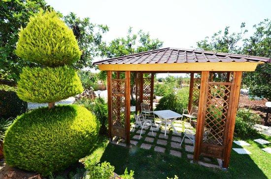 giardino con cucina e gazebo - Foto di Alla Corte di Nonna Maria ...