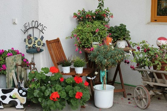 Zauscherhof: Blumendeko beim Eingang