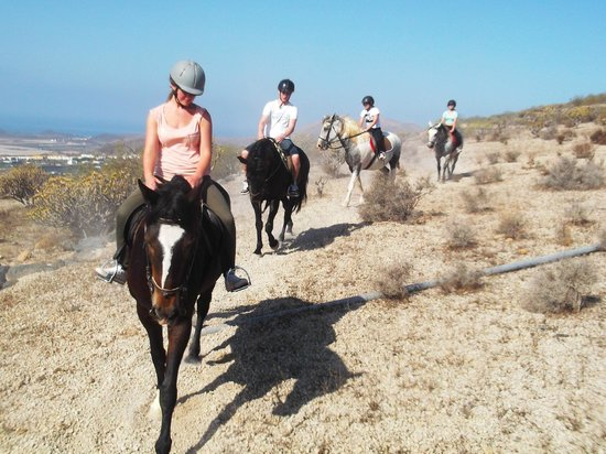 Horse Riding Adventures in Tenerife