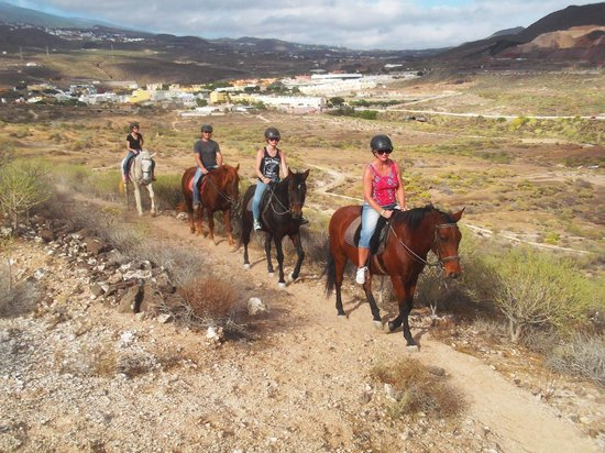 Horse Riding Adventures in Tenerife: Making the way up the mountain