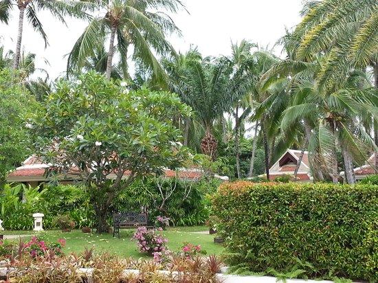 Santiburi Beach Resort & Spa: Garten