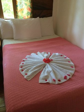 Coral Cove Resort: always towel art and flowers to welcome you back to the room!