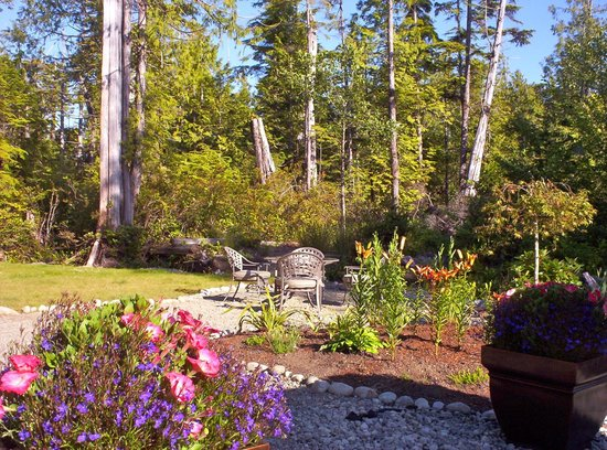 Cobble Wood Guesthouse and Bird Sanctuary House & Suites: GARDEN
