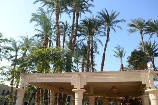 Mercure Luxor Karnak: jardines
