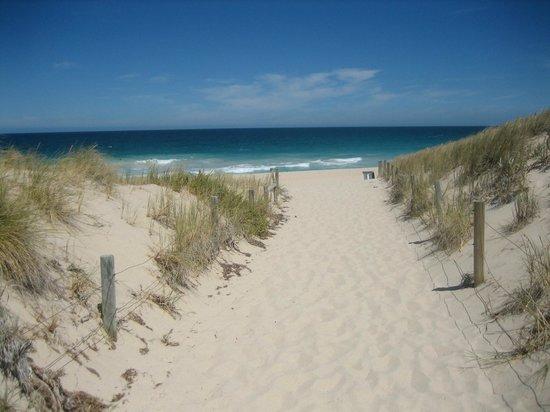Trigg Beach : 砂がとてもきれいです。