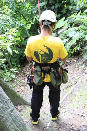 Preparação dos equipamentos para início da atividade pela equipe da Amazon Tree Climbing