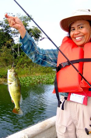 Jungle Land Panama: Day Excursions: Fish caught on day trip