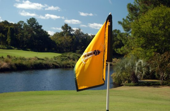 The Golf Courses of Palmetto Dunes: Arthur Hills Course at Palmetto Dunes