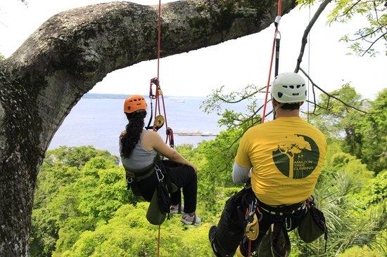 Amazon Tree Climbing : Ascensão, momento de pausa.
