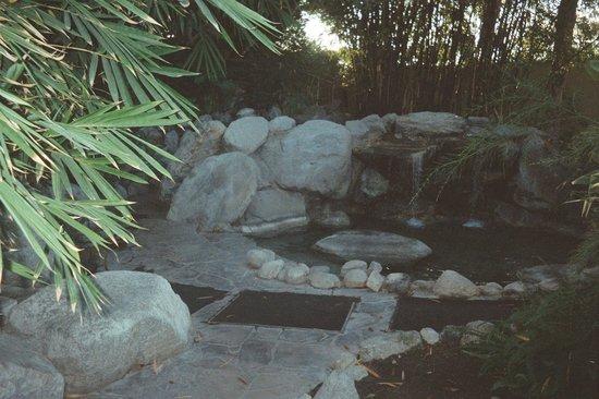Vista Grande Resort - A Gay Mens Resort: Waterfall/Lagoon