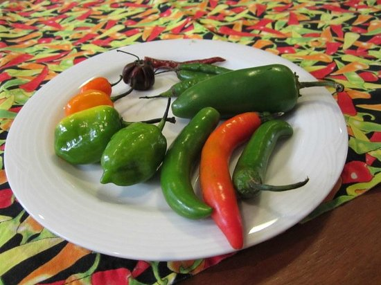 Can Cook in Cancun: some of the more than 130 varieties of peppers in Mexico