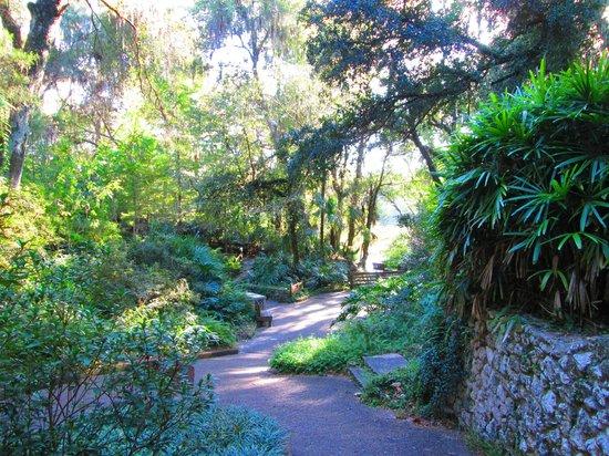 Rainbow Springs State Park - Nature Walk