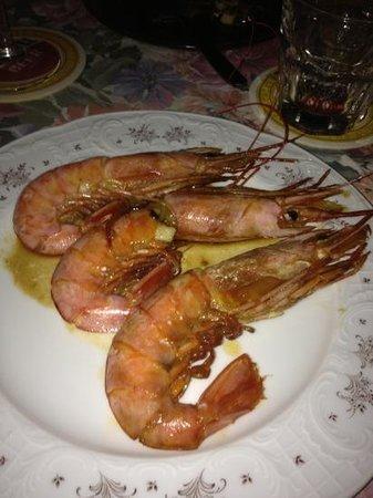 Villa Angela: excellent prawns
