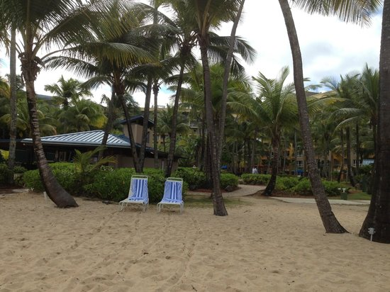 Hyatt Hacienda Del Mar: View from the beach back toward the poolside bar