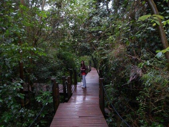 Loi Suites Iguazu: Paseos en el interior de la selva