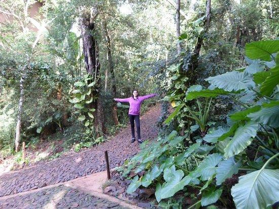 Loi Suites Iguazu: Pura naturaleza!! Mucha paz..