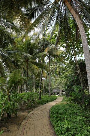 Tanjong Jara Resort: The resort's area