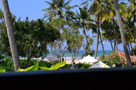 AVANI Bentota Resort & Spa : Blick aus Zimmer 224