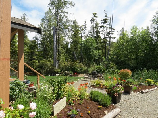 Cobble Wood Guesthouse and Bird Sanctuary House & Suites : Garden