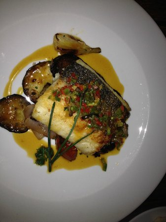 Terraza: Fish Dish was delicious!