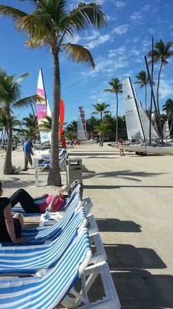 Islander Resort, a Guy Harvey Outpost : SAILBOATS ON THE ISLANDER BEACH