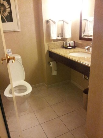 College Park Marriott Hotel & Conference Center: Rm 255 Exec King Old Building Bathroom