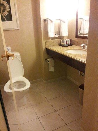 College Park Marriott Hotel & Conference Center : Rm 255 Exec King Old Building Bathroom