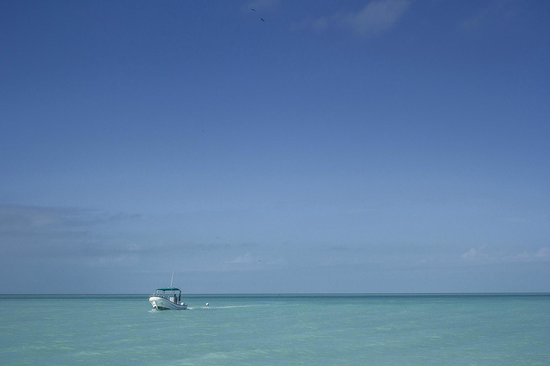Holbox Hotel Casa las Tortugas - Petit Beach Hotel & Spa : view of the ocean on a nice day
