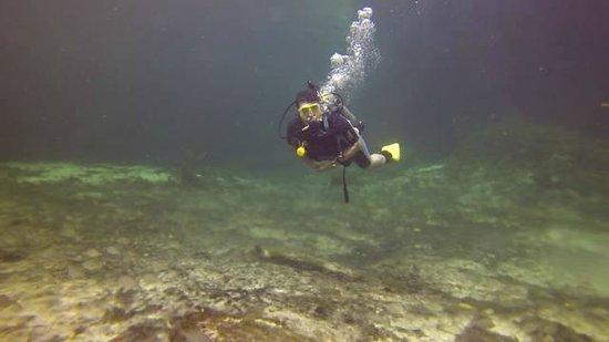 Casa Cenote: ótima visibilidade, 8m de profundidade