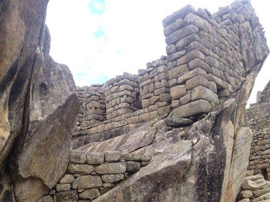 Machu Picchu Viajes Peru : condor