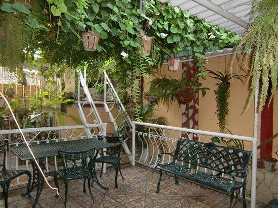 Roy's Terrace Inn: the first terace
