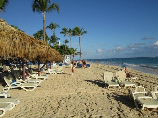 Luxury Bahia Principe Esmeralda Don Pablo Collection : Beach during day