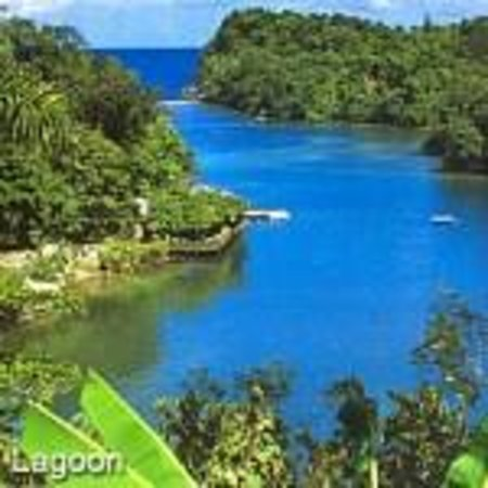 Jamaica Unique Tours & Taxi - Day Tours