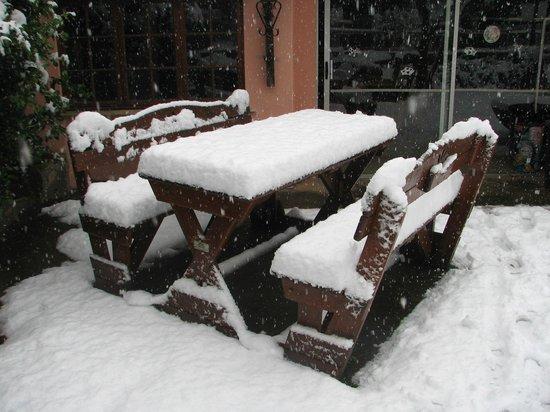 Ashtonvale Guest Farm : freezing winter