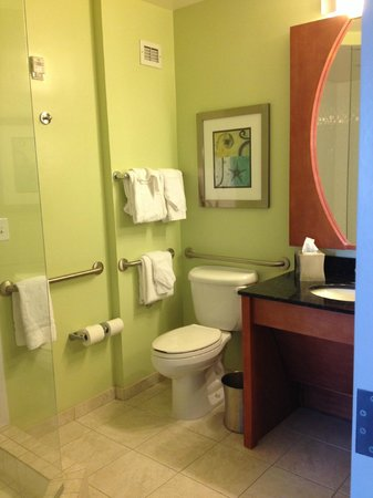 Hotel Indigo Jacksonville Deerwood Park: Large, clean bathroom