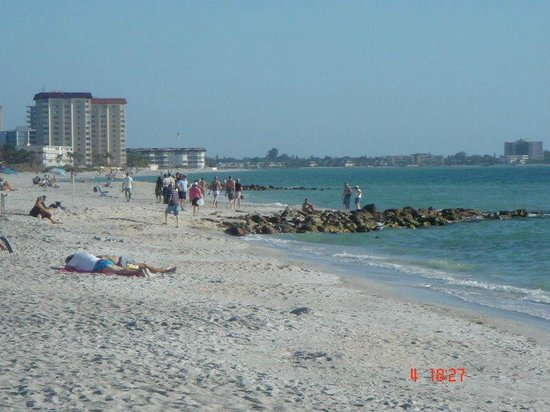 Siesta Beach: SIesta Key