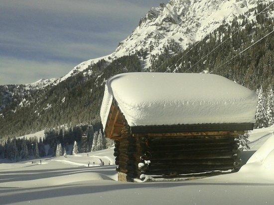 Centro sci di fondo Passo San Pellegrino - Alochet: Casetta sul percorso 5 km