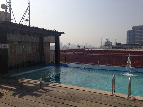 Fortune Select Exotica, Navi Mumbai : The bird bath, sorry, pool