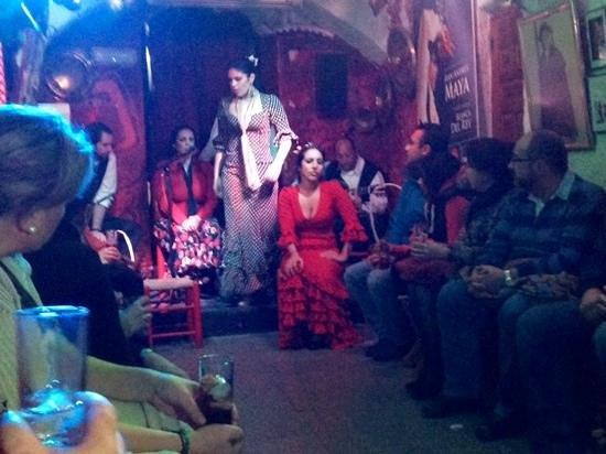 Zambra Gypsy - Flamenco Show : Flamenco